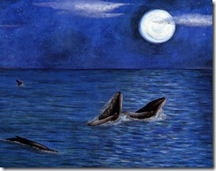 Whales Sing_whales-1
