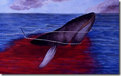 Whales Sing_whales-3
